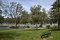 Park by Murray River NSW-1 (14987013813).jpg