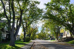 Parkdale, Calgary - Parkdale, Calgary, Alberta