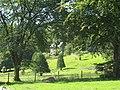 Parkland at Dolmelynllyn Hall - geograph.org.uk - 533883.jpg