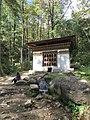 Paro Taktsang, Taktsang Palphug Monastery, Tiger's Nest -views from the trekking path- during LGFC - Bhutan 2019 (322).jpg