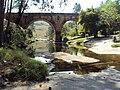 Parque Campos Gerais - panoramio.jpg