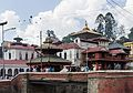 Pasupatinath Temple from the bank of Bagmati river-Eastern side-Bijay- IMG 3358.jpg
