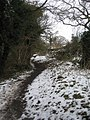 Path around Calleva roman town - geograph.org.uk - 1340702.jpg