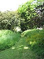 Path from St Andrew's to Raveningham Hall - geograph.org.uk - 1337979.jpg