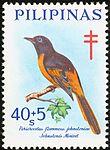 Pericrocotus speciosus 1969 stamp of the Philippines.jpg