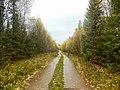 Permskiy r-n, Permskiy kray, Russia - panoramio (752).jpg