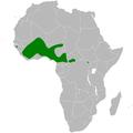 Petrochelidon preussii distribution map.png