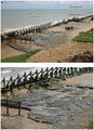 Photographs of Area A at Happisburgh (1).png