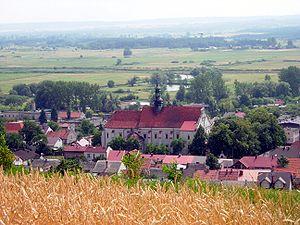 Pińczów County - View from Mount St. Anne in Pińczów