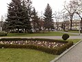 Plac 1000lecia glogow - panoramio (2).jpg