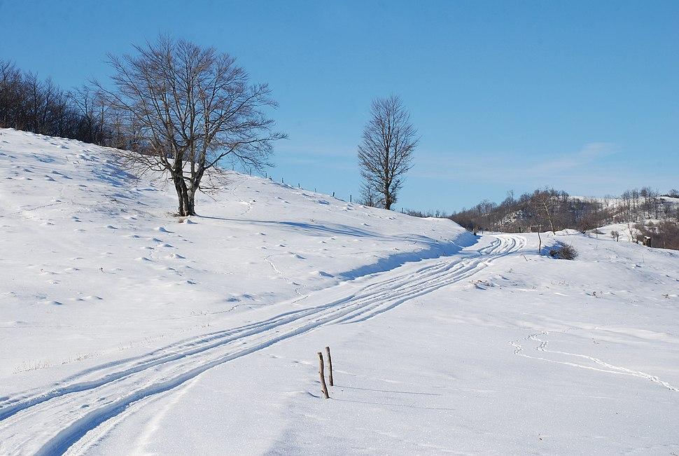 Planina Jablanik - Debelo brdo - Na putu ka selu Gornje Košlje i istočnim obroncima Jablanika