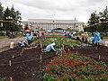 Planting Flowers, Irkutsk - panoramio.jpg