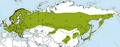 Poecile montanus distribution map detailed.png
