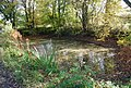 Pond by the side of the track - geograph.org.uk - 1028442.jpg