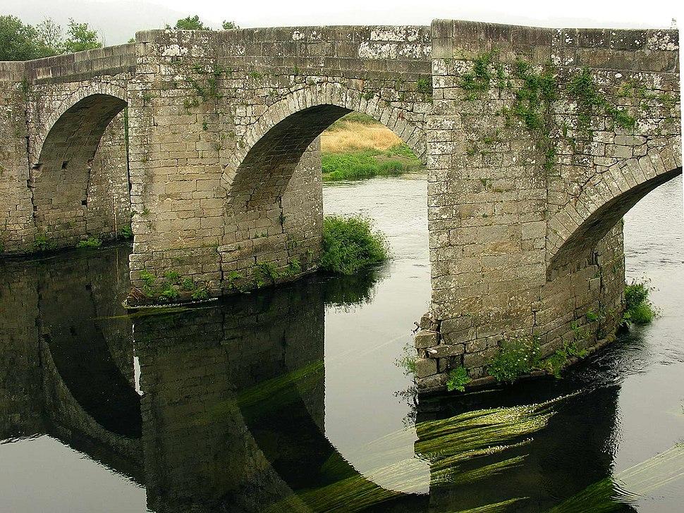 Pontevea. Galicia. Río Ulla 9