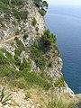 Popovici u Cavtatu - stezka tesana ve skale vede k plazi.jpg