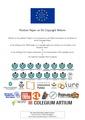 Position Paper on EU Copyright Reform (release version).pdf