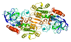 Protein ADH1B PDB 1deh.png