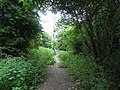 Public footpath from Green Dragon Lane, London N21 - geograph.org.uk - 826780.jpg