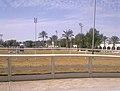 Qatar Equestrian Federation arena view.jpg