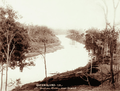 Queensland State Archives 2485 Brisbane River near Ipswich c 1898.png