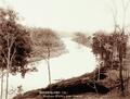 Queensland State Archives 2485 Brisbane River near Ipswich c 1898.png