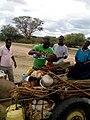 Quenching Thirst - Kenya (17056889581).jpg