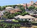 Quinta da Piedade, Calheta, Madeira - IMG 4905.jpg