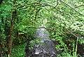 R. Mite from Bowerhouse Bridge - geograph.org.uk - 1337291.jpg