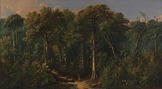 Javanese Jungle