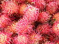Rambutan fruits.jpg
