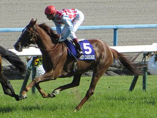 Red Cadeaux British-bred Thoroughbred racehorse