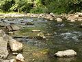 Reka Jerma 01.JPG