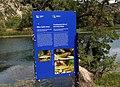 Ribe rijeke Krke - informativna tabla.jpg