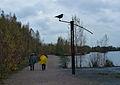 Rieulay- Circuit du marais, la reserve ornithologique.jpg