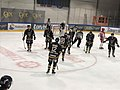 Ringerike Panthers 03.jpg