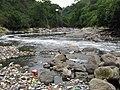 Rio Acelhuate en lomas del rio - panoramio.jpg