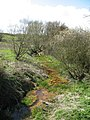 River Ouzel - geograph.org.uk - 153886.jpg