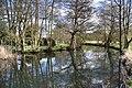 River Thet at Thetford - geograph.org.uk - 1826855.jpg