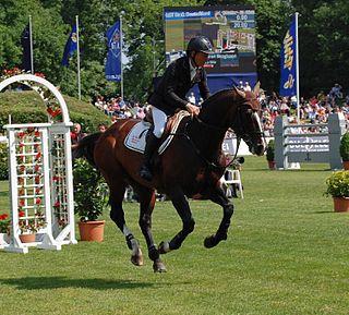 Rolf-Göran Bengtsson Swedish show jumper