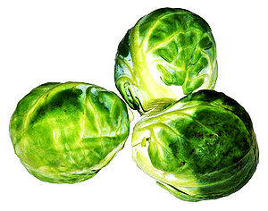 This image shows tree brussel sprouts.