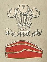 Royal Wiltshire Yeomanry badge and service cap.jpg