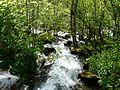 Ruisseau de Coume Nère Cazeaux aval.JPG