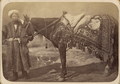 Saddle Gear of Central Asians WDL10875.png