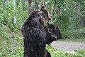 Sahoro Resort Bear Mountain サホロリゾート ベアマウンテン09.jpg