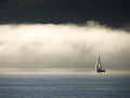Sail Fog 39.jpg