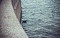Saint Petersburg, Russia (Unsplash 0Ta9JhD8x k).jpg