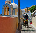 Santorini Donkeys (3334615808).jpg