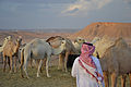 Saudi Arabia (6319635507).jpg