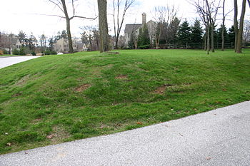 Scarfed (mower-damaged) lawn on a steep slope